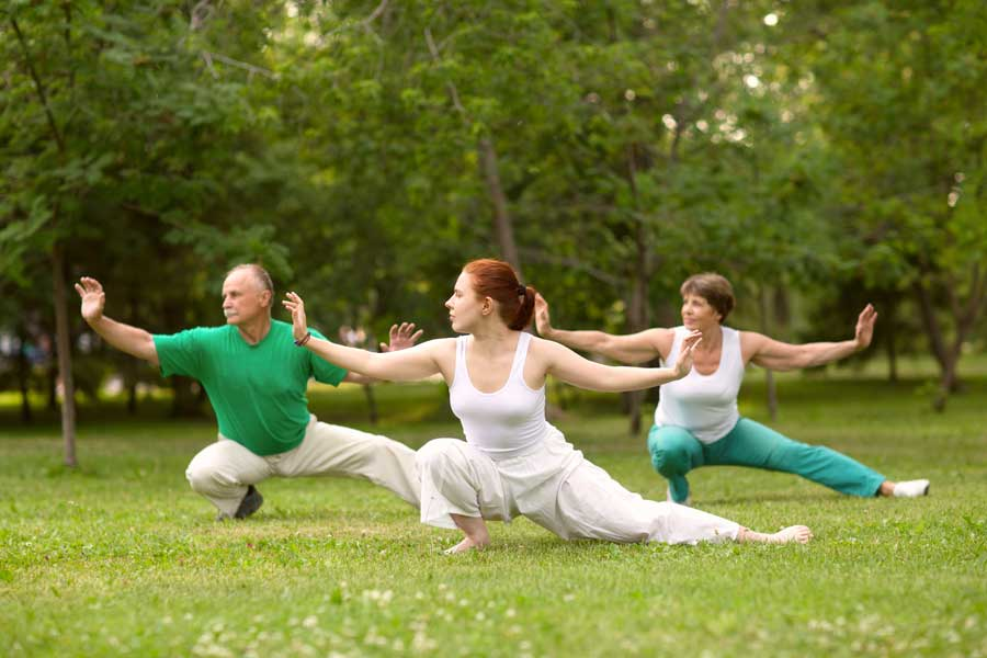 A Short Guide to Tai Chi